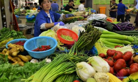 China's top 5 seasonal summer vegetables